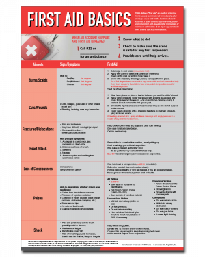 First Aid At-A-Glance Poster